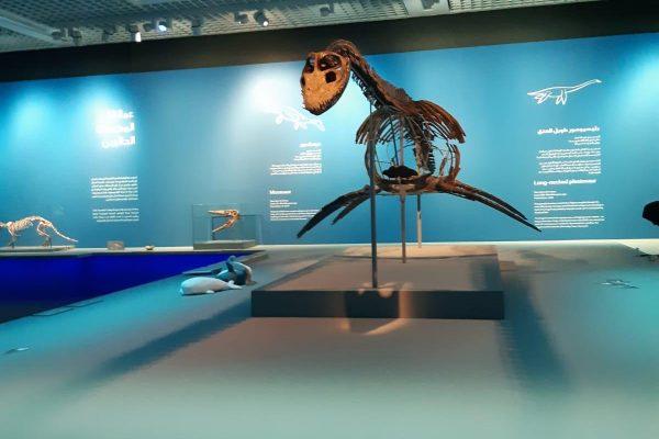 Jurassic exhibition trip 1 (2)