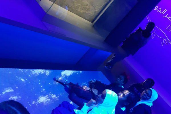 Jurassic exhibition trip 1 (7)