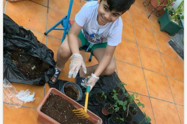 AHIS-PlantingActivity2020-17