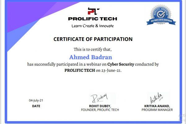 Cybersecurity webinar with Prolific Tech company (1)