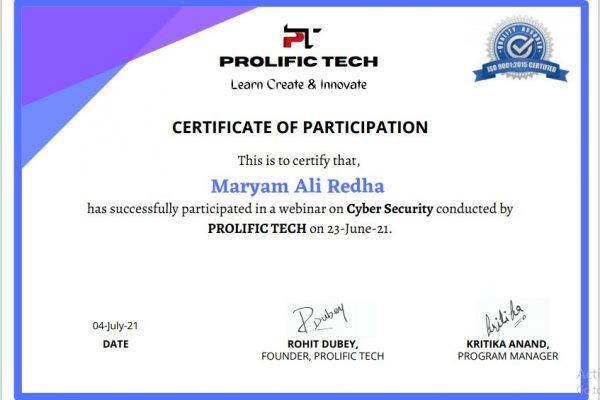 Cybersecurity webinar with Prolific Tech company (14)