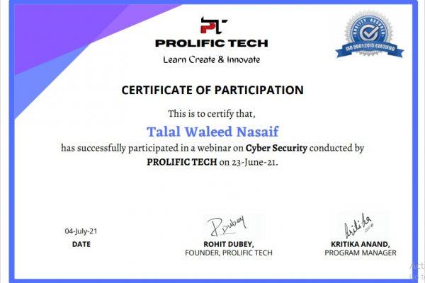 Cybersecurity webinar with Prolific Tech company (16)
