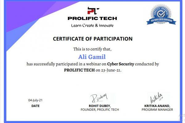 Cybersecurity webinar with Prolific Tech company (2)