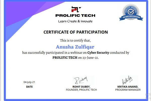 Cybersecurity webinar with Prolific Tech company (5)